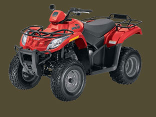 Arctic Cat 300 2X4 Red Picture