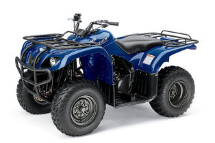 Yamaha bruin 250 4x2 2006 specs quads atv 39 s in south for 2006 yamaha bruin 350