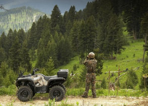 Yamaha Grizzly Quad Bike Specifications