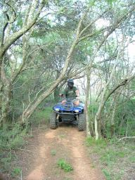 When we got back on the quads, and rode 20 meters, we found ourselves in an almost tropical forest.