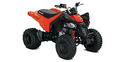 2020 Can-Am DS 250 ATV specs and photos of Can-Am DS 250